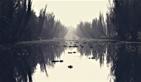 canal de xochimilco tetrico