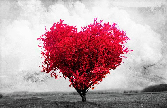 encontar-un-nuevo-amor-en-linea-completamente-gratis